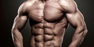 Упражнения для пресса — 9 упражнений для проработки мышц живота
