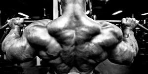 Как накачать трапециевидные мышцы — программа на 8 недель