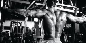 Тренировка дельтовидных мышц — проработка трех пучков дельт
