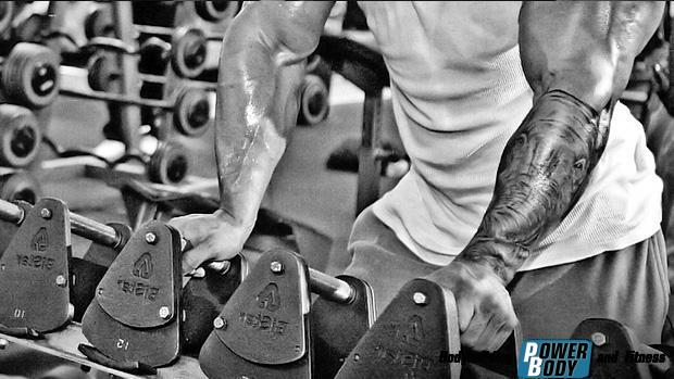 dumbbell-rack. Наращивание мышечной массы