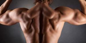 Упражнения для плеч и спины — придаем фигуре конусообразный торс