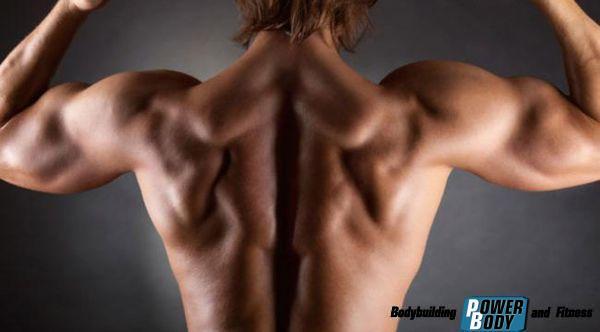 Упражнения для плеч и спины