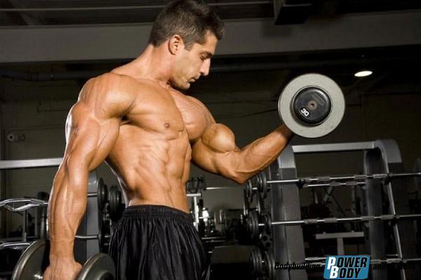 Тренировочные принципы - как накачать мышцы