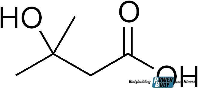 Молекула hmb