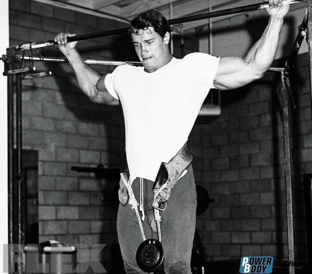 Тренировка спины Арнольда